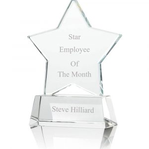 Glass star trophy / Award